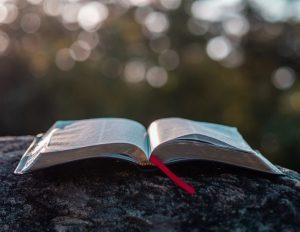 An open Bible on a rock