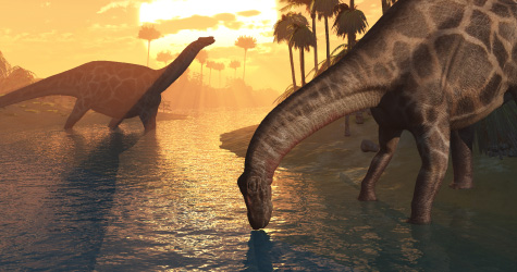 Apologetics Press - What Happened to the Dinosaurs?